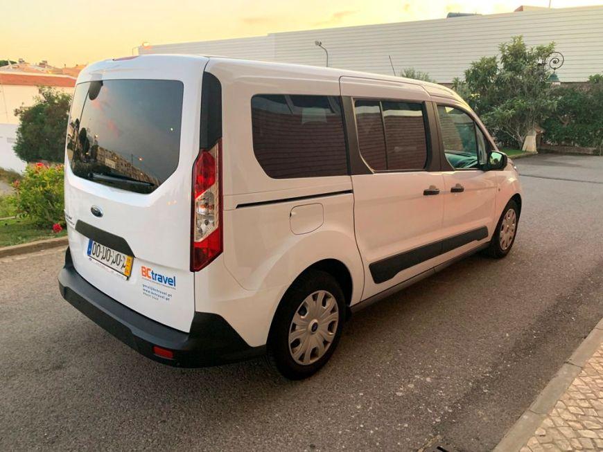 Mini Van 4
